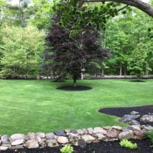 Green Horizons lawn care and landscaping makeovers