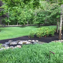 Green Horizons lawn care, landscaping and trees, flower and shrubbery care