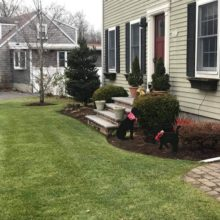 Green Horizons Landscaping Lawn and Yard Care