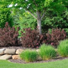 Welcome to Green Horizons, Landscaping and Property Maintenance Services